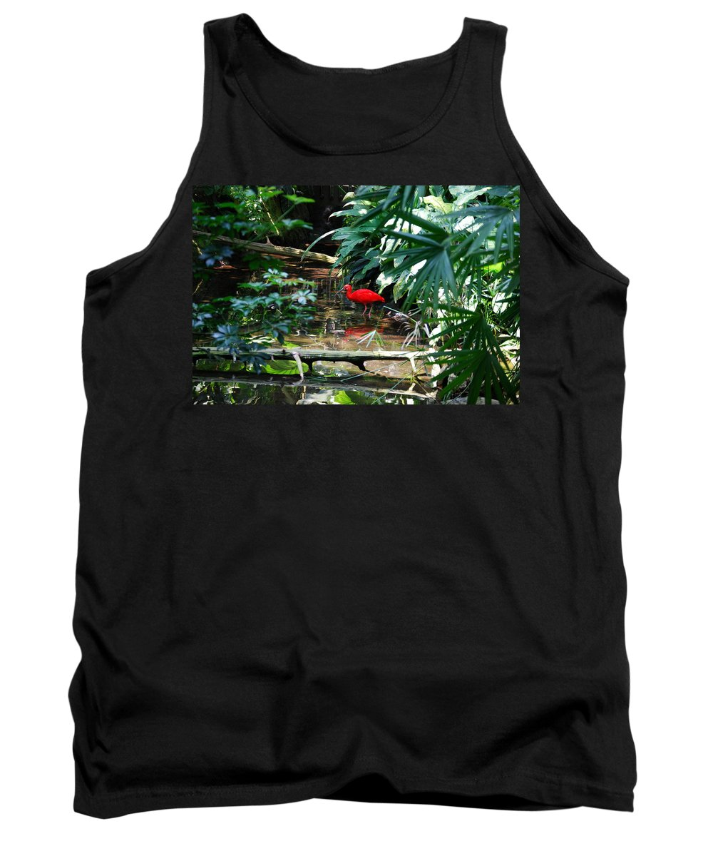 Scarlet Ibis Tank Top featuring the photograph Scarlet Ibis by Eric Liller
