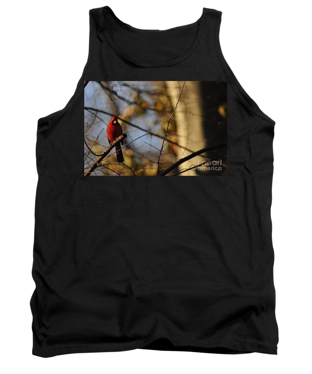 Red Bird Tank Top featuring the photograph Shadowy Figure by Vicky Tubb