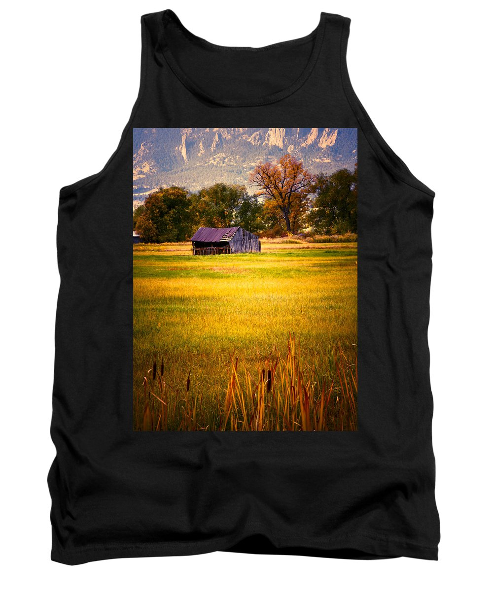 Shed Tank Top featuring the photograph Shed In Sunlight by Marilyn Hunt