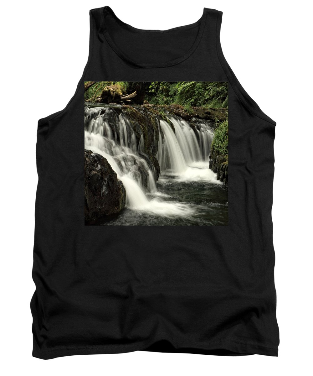 Columbia Gorge Tank Top featuring the photograph Silver Falls State Park by Ingrid Smith-Johnsen
