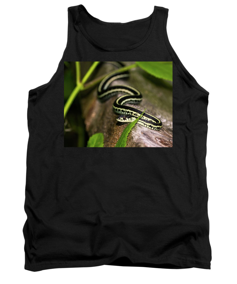 Snakes Tank Top featuring the photograph Snake by James Farrell