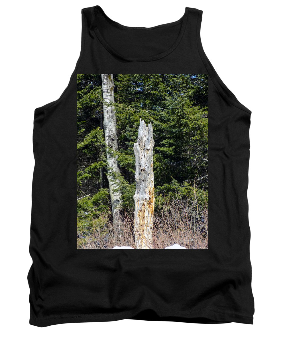 Broken Tree Tank Top featuring the photograph Snapped by William Tasker
