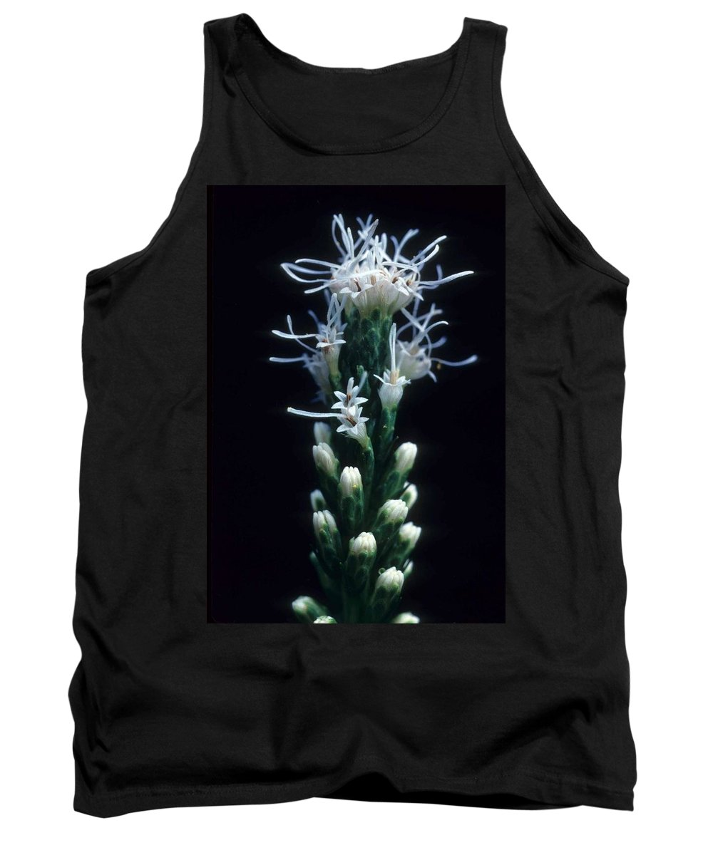 Flower Tank Top featuring the photograph Snowflake Flower by Laurie Paci