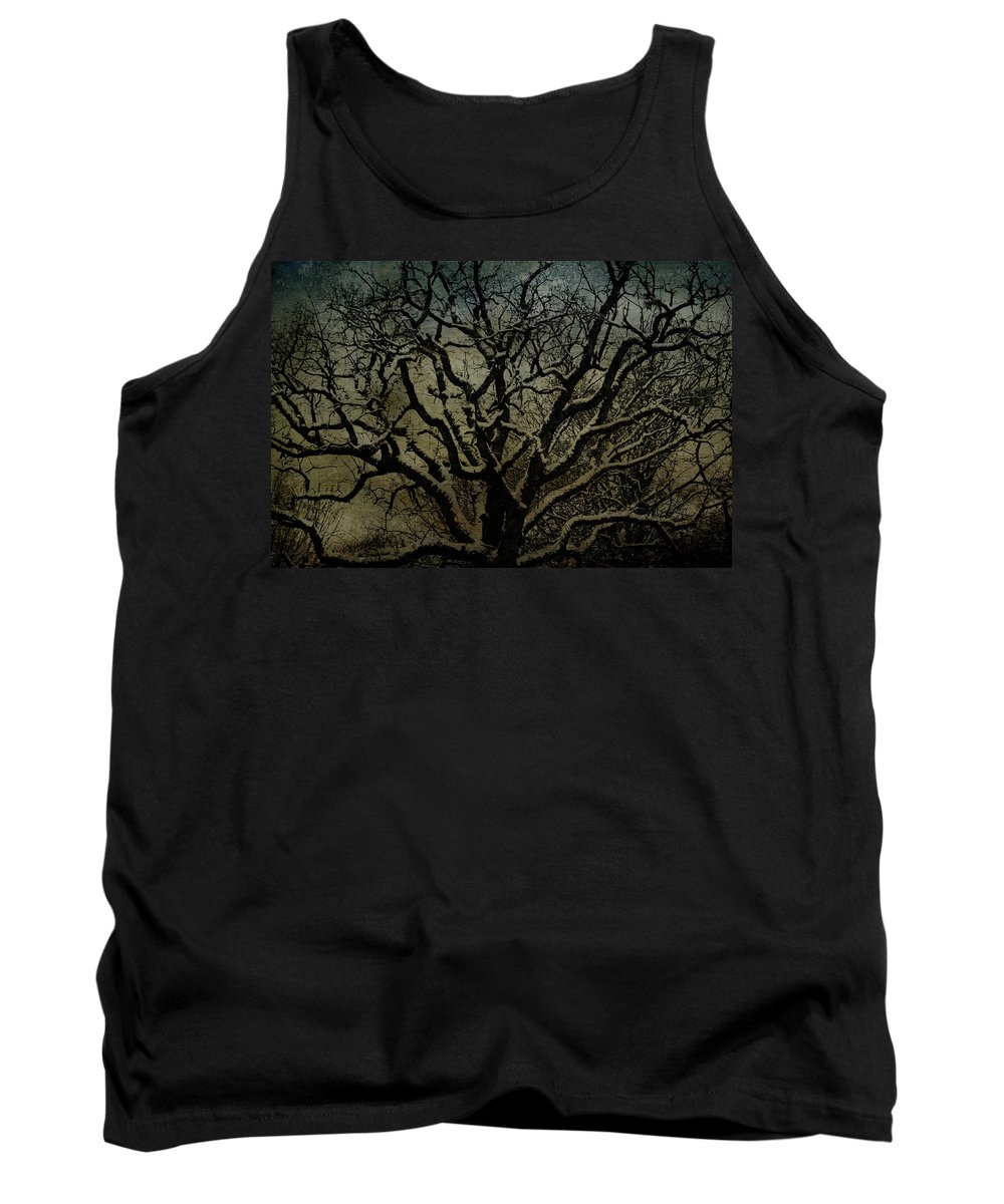 Winter Scenes Tank Top featuring the photograph Snowy Tree by Jill Smith