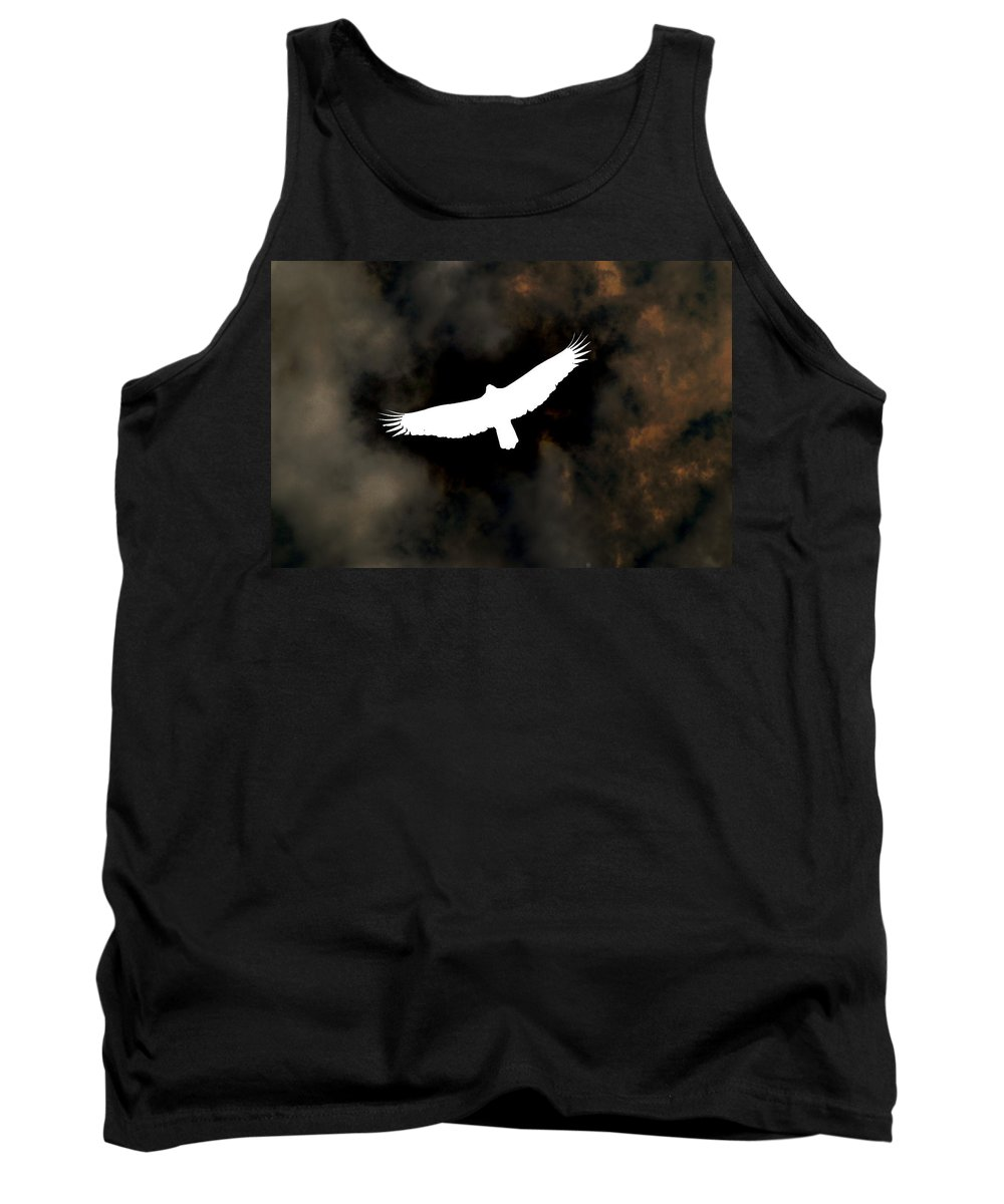 Hawks Tank Top featuring the photograph Soaring by Jeff Bord