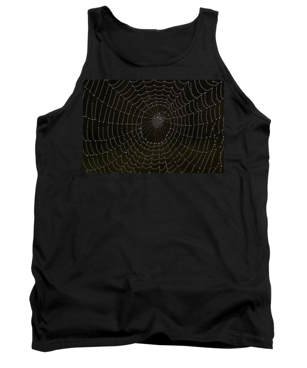 Cobweb Tank Top featuring the photograph Spider Cobweb by Cliff Norton