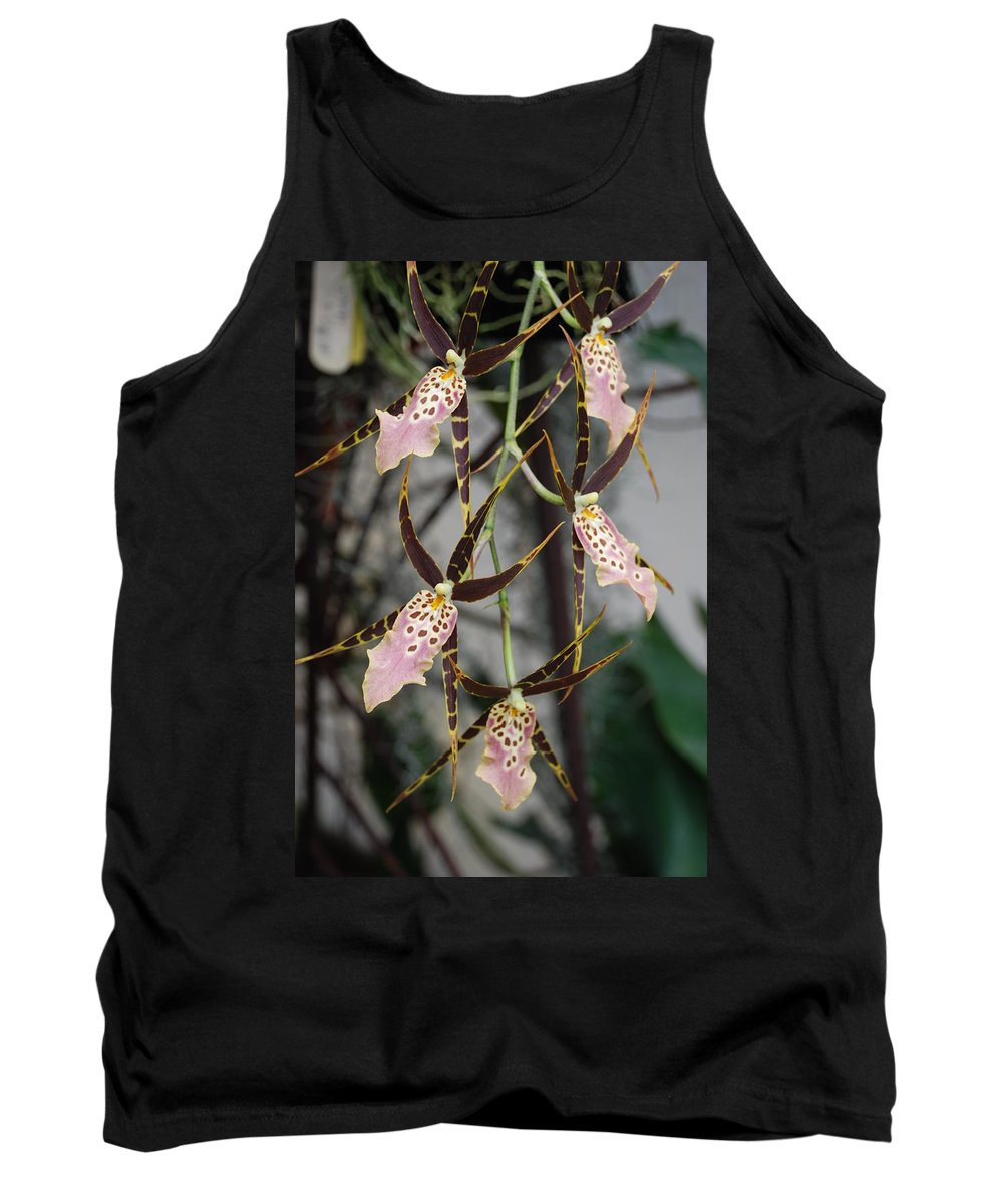 Pink Tank Top featuring the photograph Spider Orchids by Rob Hans