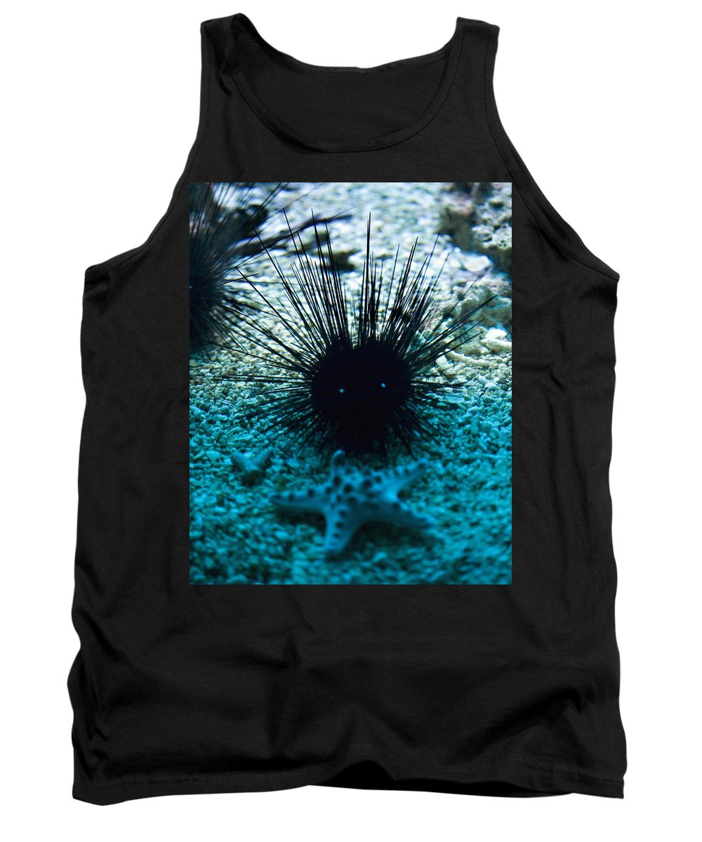 Aquarium Tank Top featuring the photograph Spike by Marilyn Hunt