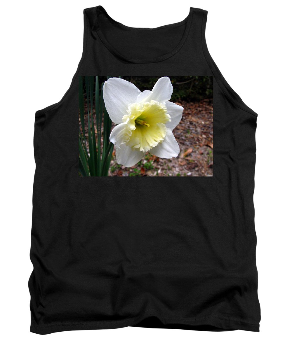 Daffodil Tank Top featuring the photograph Spring's First Daffodil 1 by J M Farris Photography