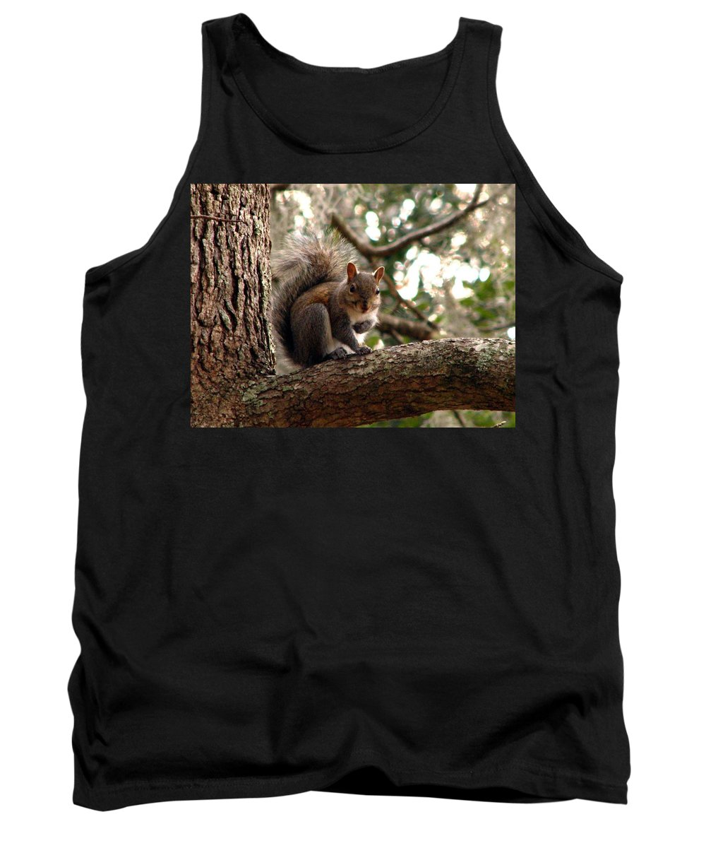 Squirrel Tank Top featuring the photograph Squirrel 8 by J M Farris Photography