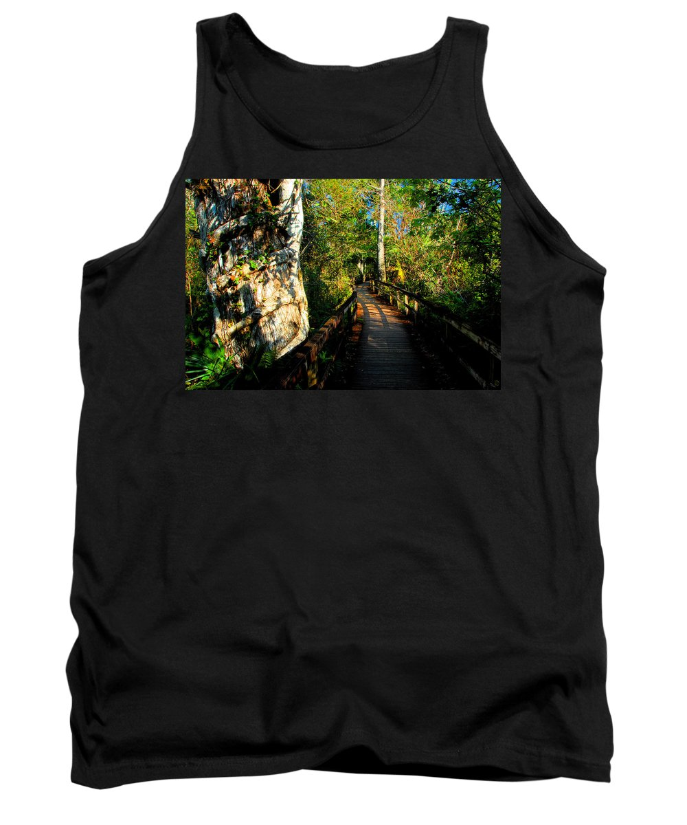 Strangler Fig Tank Top featuring the painting Strangler Fig by David Lee Thompson