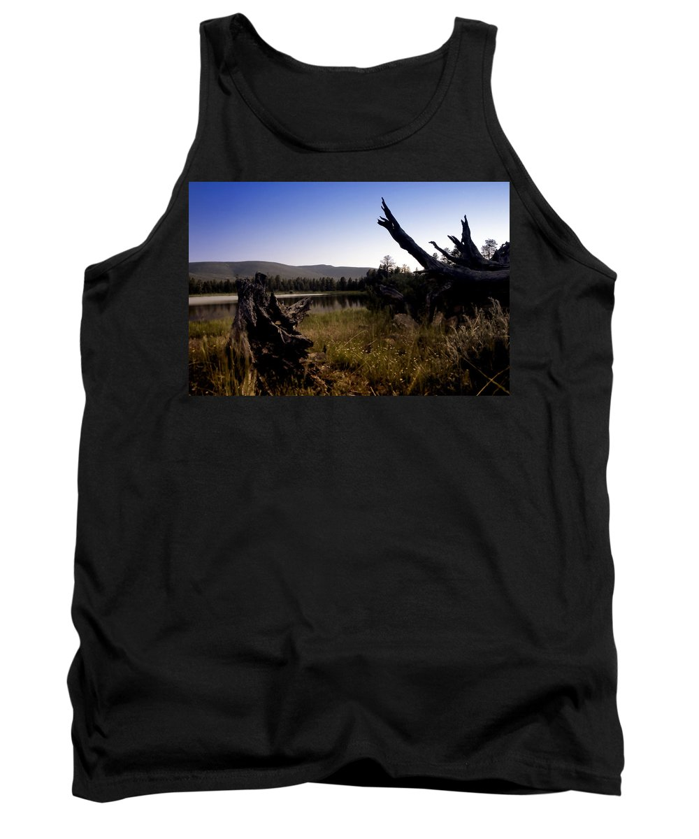 Nature Tank Top featuring the photograph Stumped By The Lake by John K Sampson