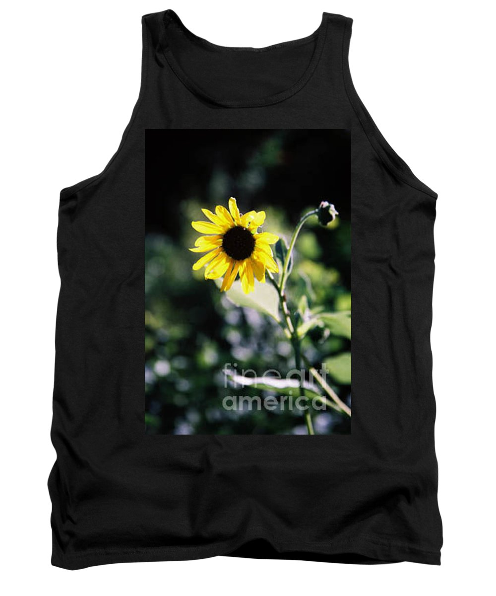 Sunflower Tank Top featuring the photograph Summer Sunshine by Kathy McClure