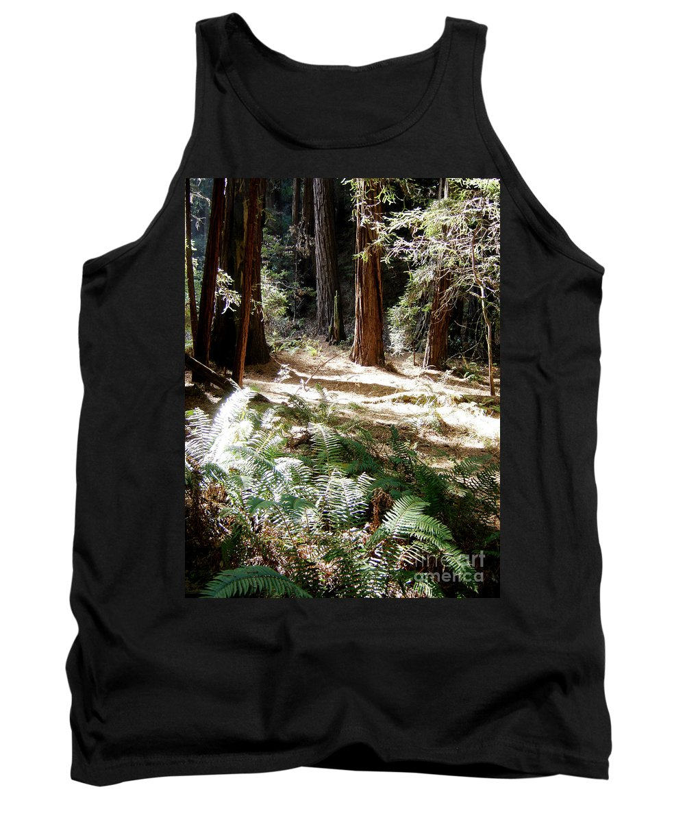 Sunlight Tank Top featuring the photograph Sunlight On Path by Mary Rogers