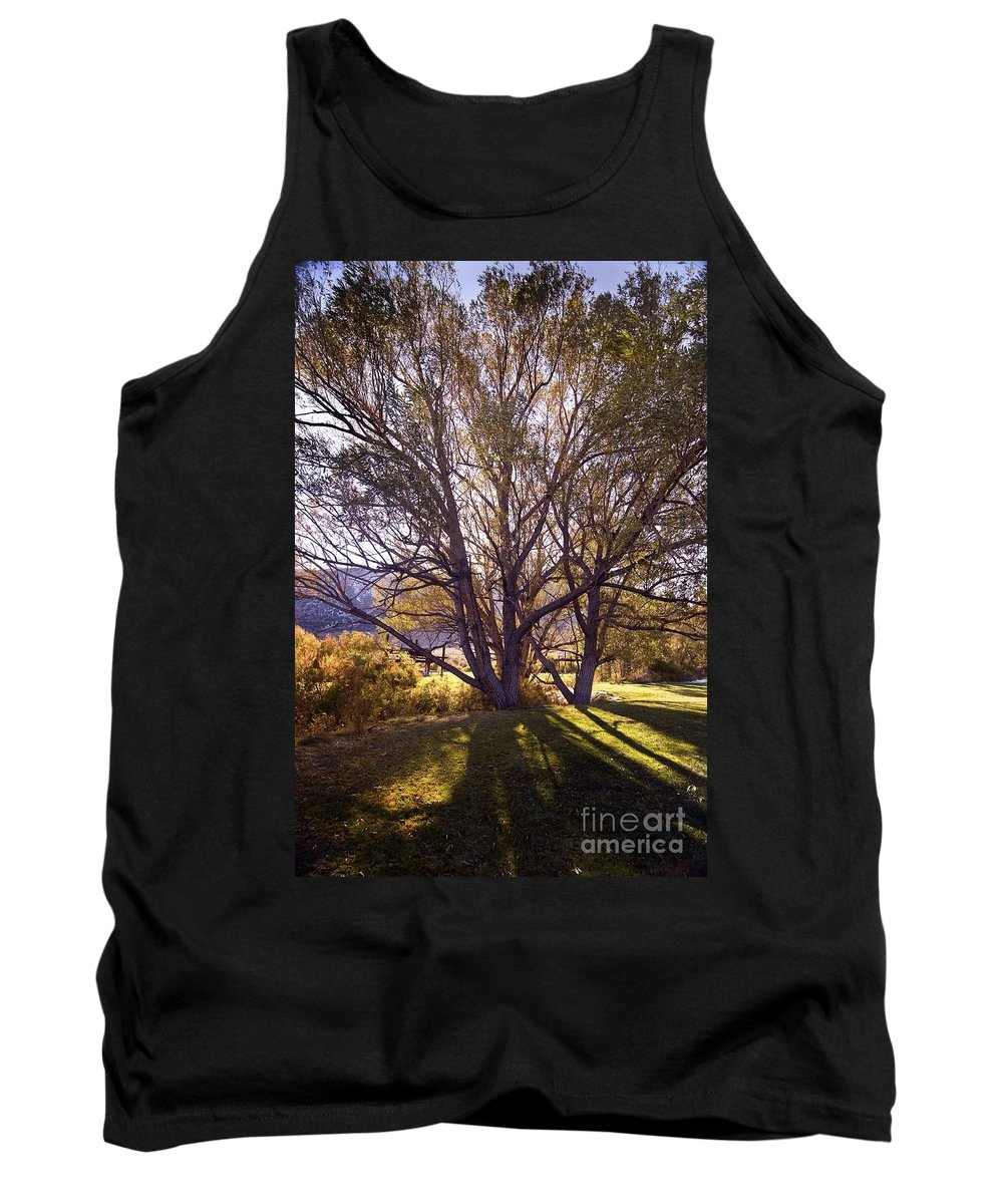 Western Scenes Tank Top featuring the photograph Sunny Mono Tree by Norman Andrus
