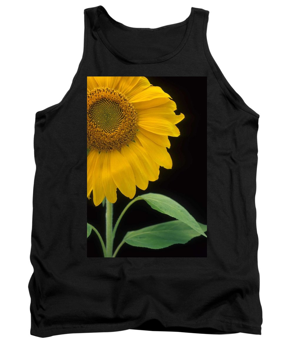 Sunflower Tank Top featuring the photograph Sussex County Gem by Laurie Paci