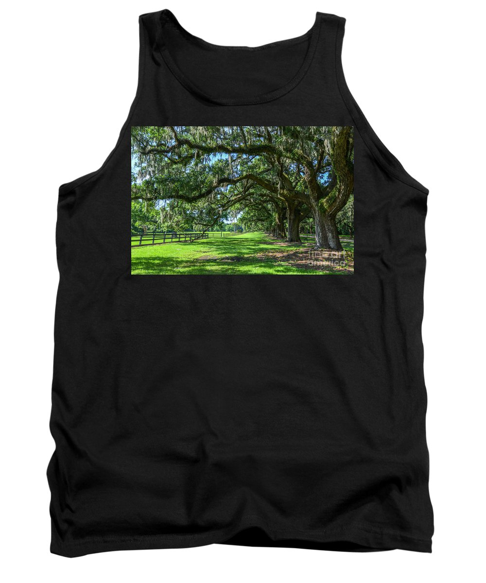 Ave Of Oaks Tank Top featuring the photograph Tale Of The Oaks by Amanda Sinco
