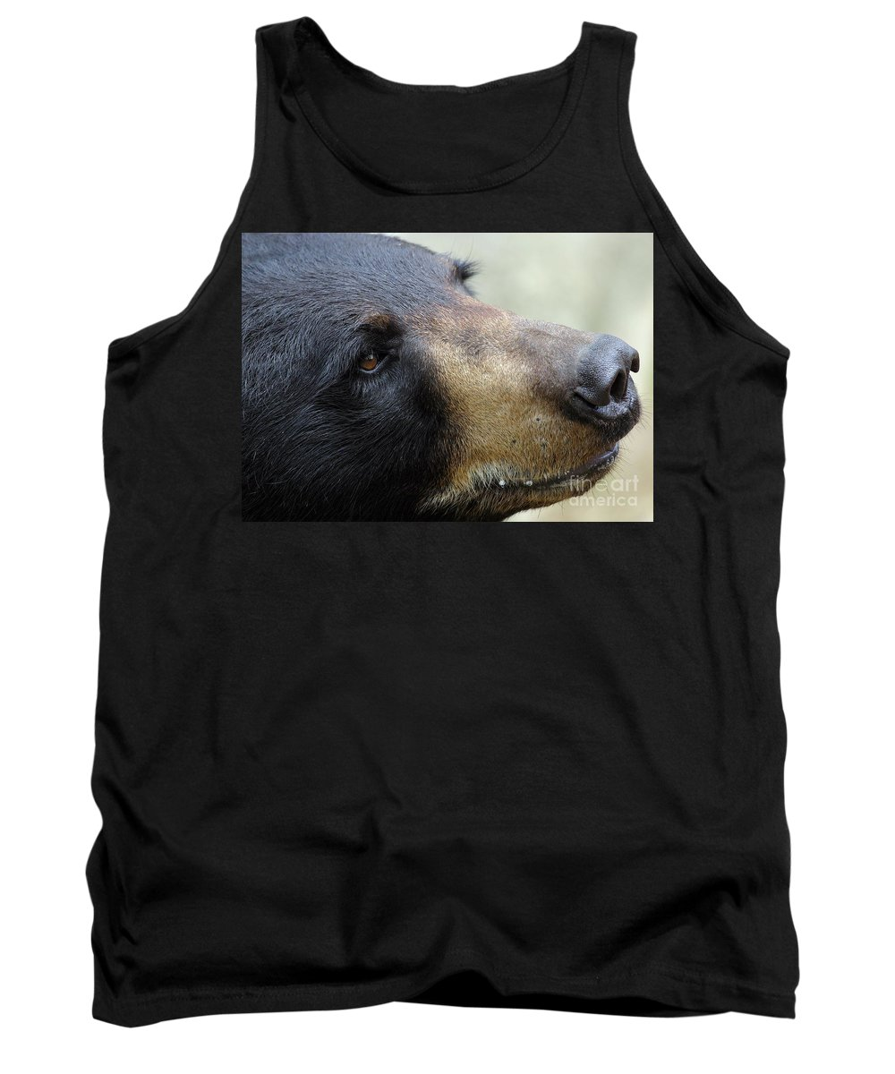 Bear Tank Top featuring the photograph That Face by Karol Livote