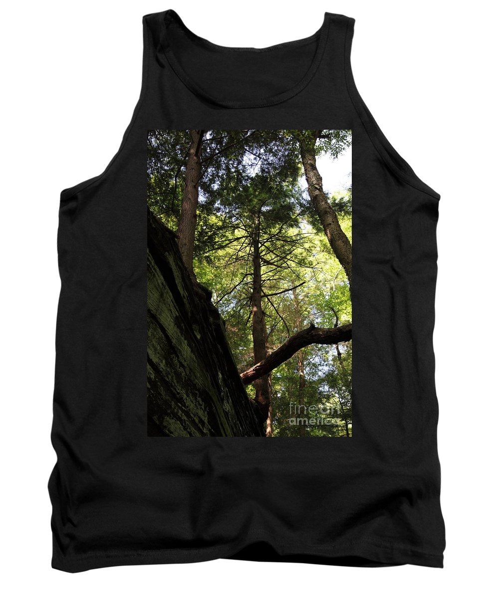 Tree Tank Top featuring the photograph The Fallen Triangle by Amanda Barcon