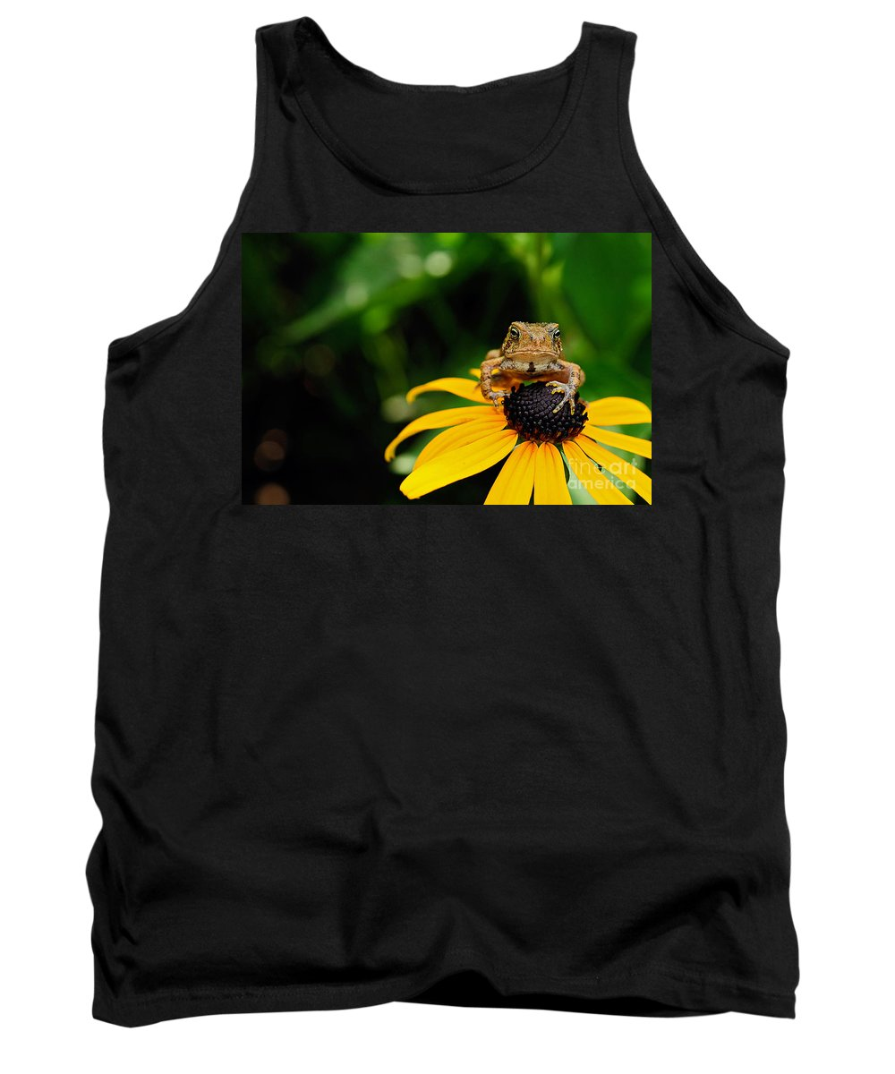 Toad Tank Top featuring the photograph The Harbinger by Lois Bryan
