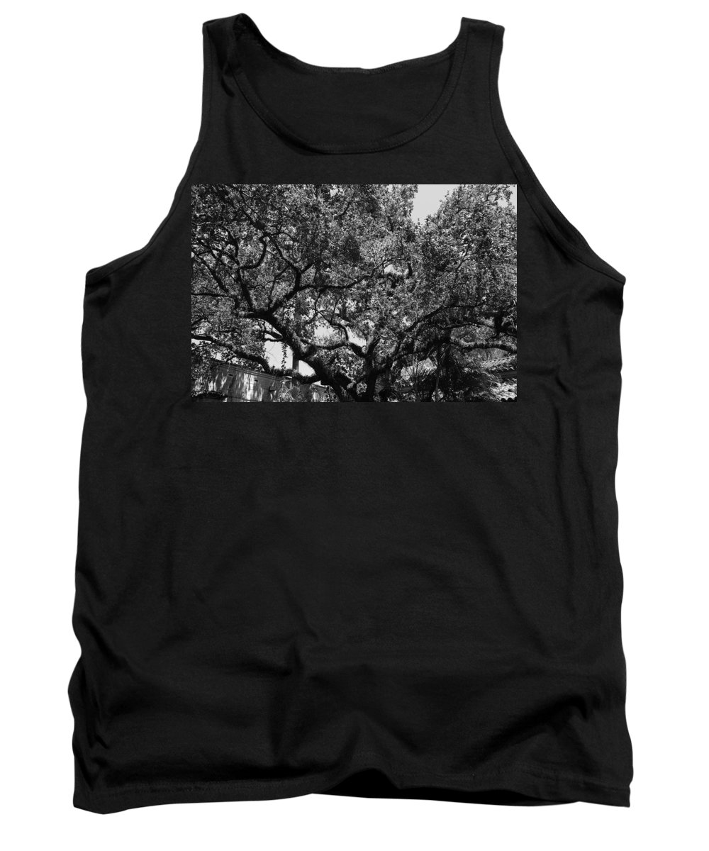 Black And White Tank Top featuring the photograph The Monastery Tree by Rob Hans
