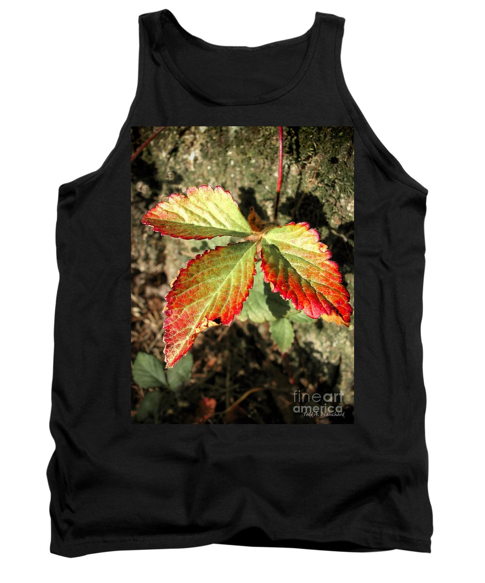 Forest Tank Top featuring the photograph Three Leaves by Todd Blanchard