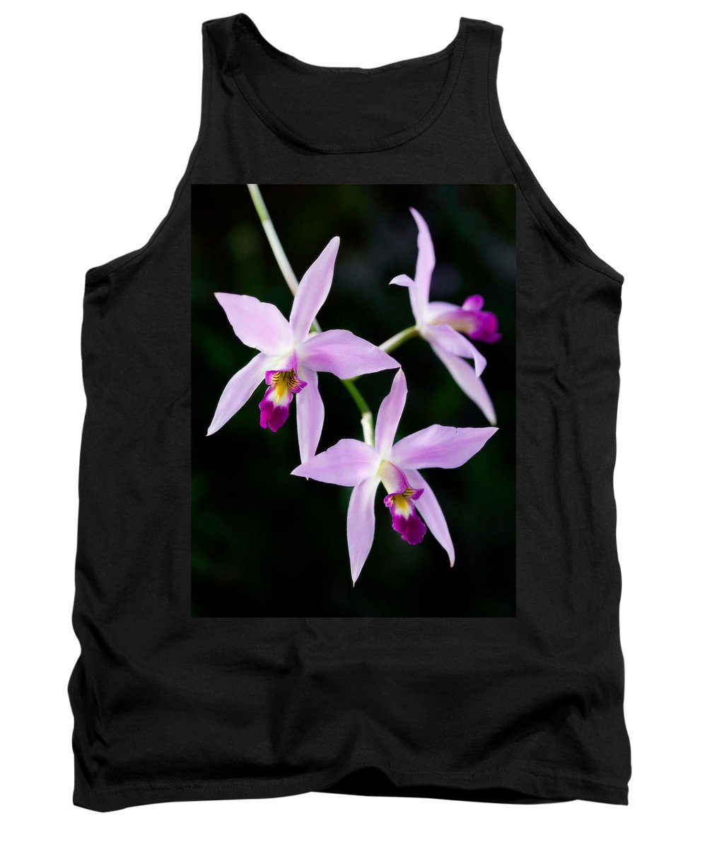 Orchid Tank Top featuring the photograph Three Orchids by Marilyn Hunt