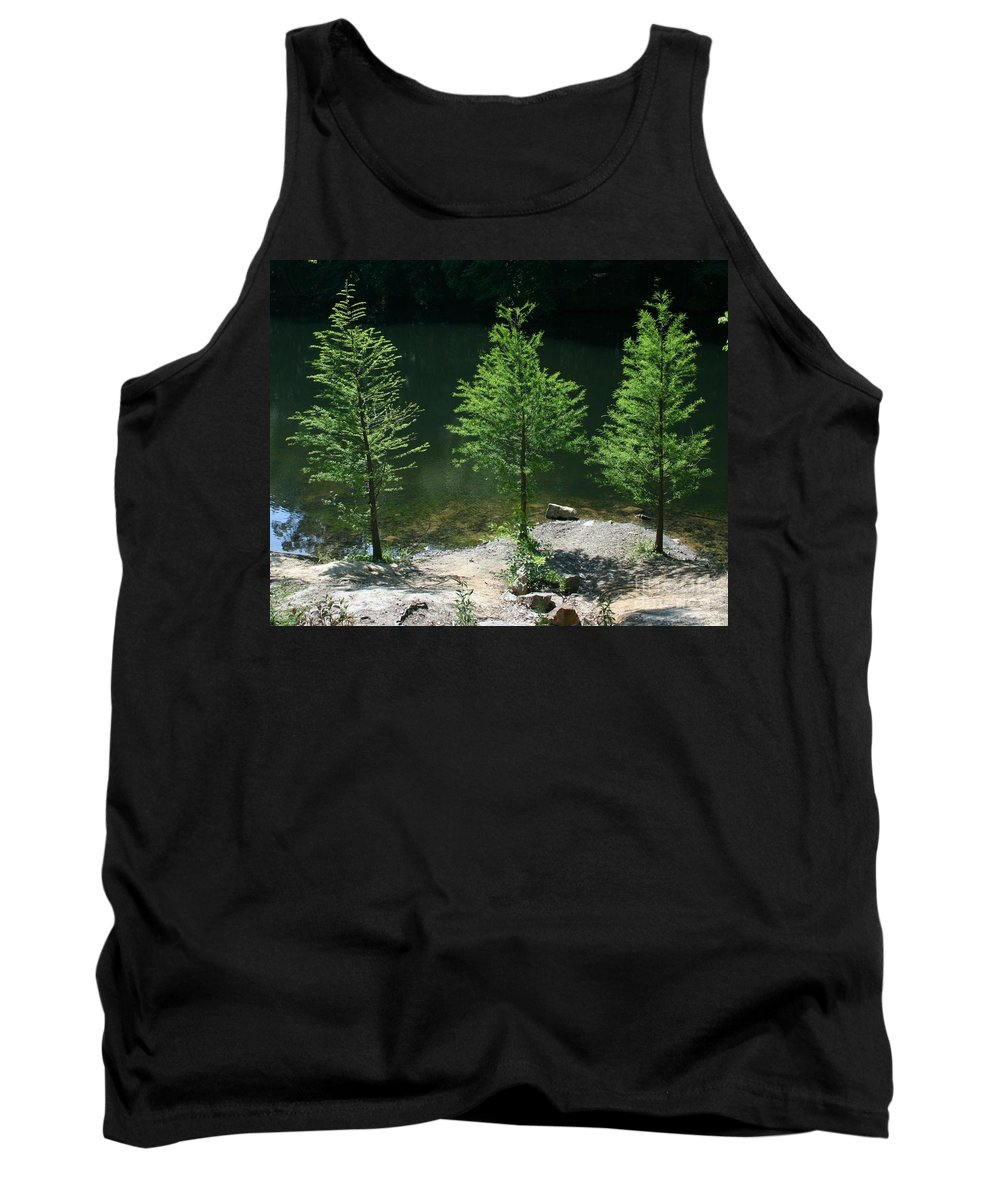 Trees Tank Top featuring the photograph Three Trees Of Ohio by Dawn Downour