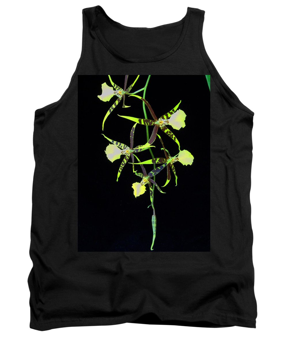 Orchid Tank Top featuring the photograph Tigers by Laurie Paci
