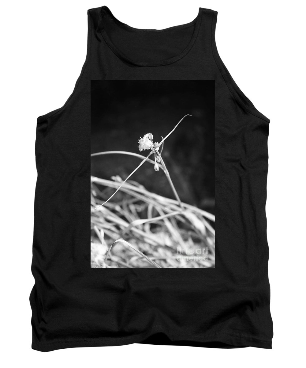 Wildflowers Tank Top featuring the photograph Tiny Ballerina by Kathy McClure