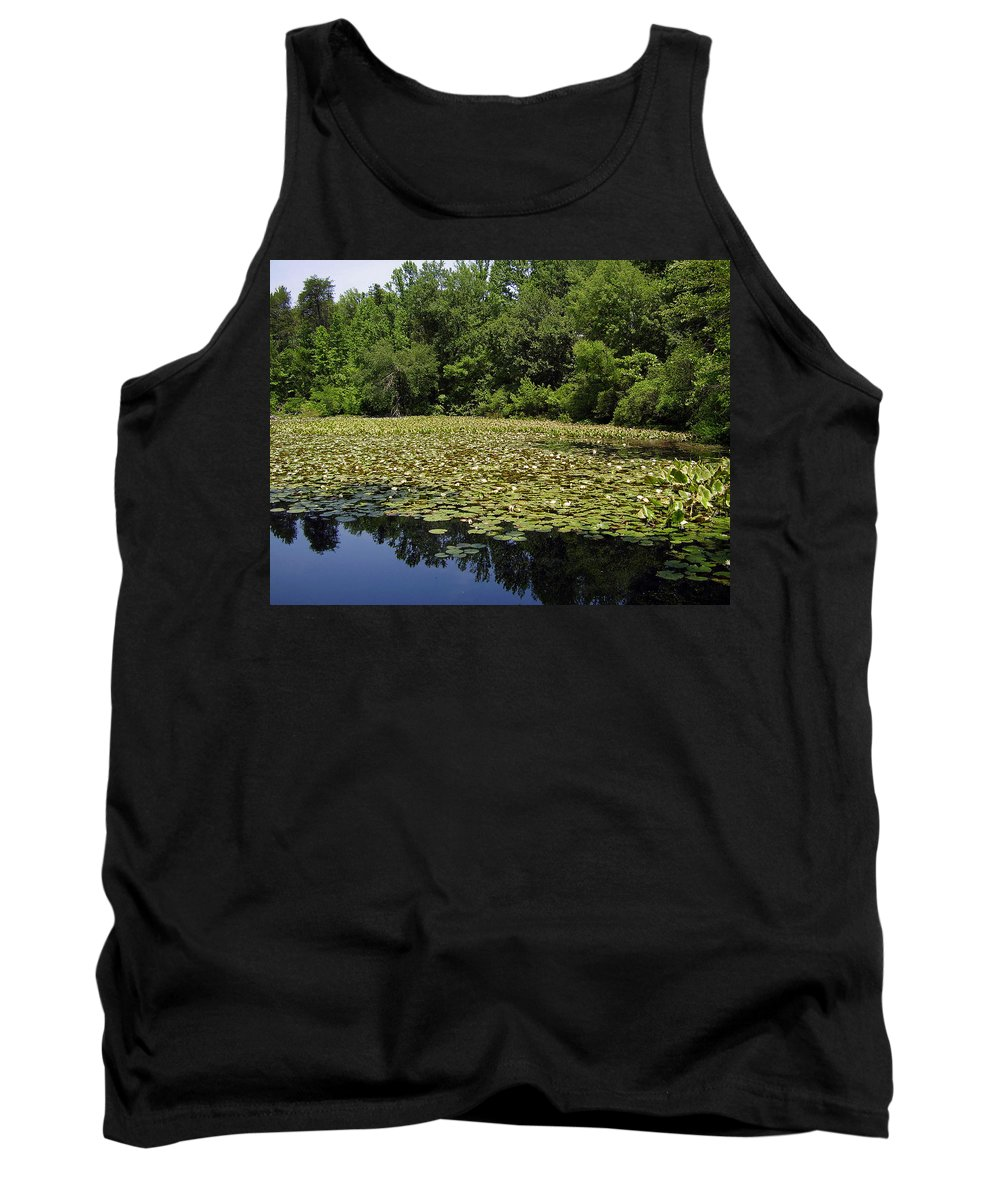 Tranquility Tank Top featuring the photograph Tranquility by Flavia Westerwelle
