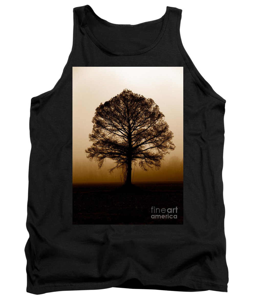 Trees Tank Top featuring the photograph Tree by Amanda Barcon