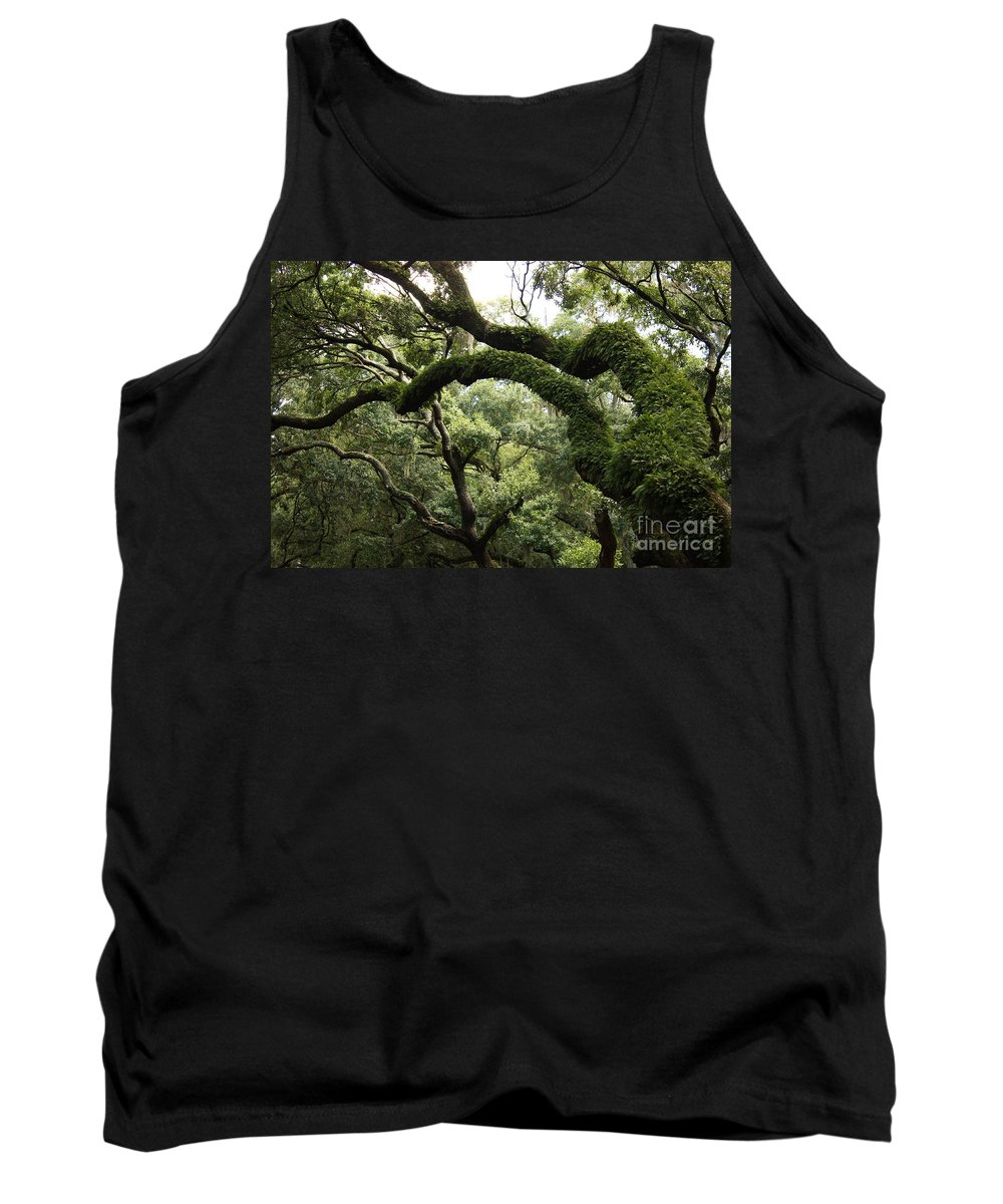 Tree Tank Top featuring the photograph Tree Drama by Carol Groenen