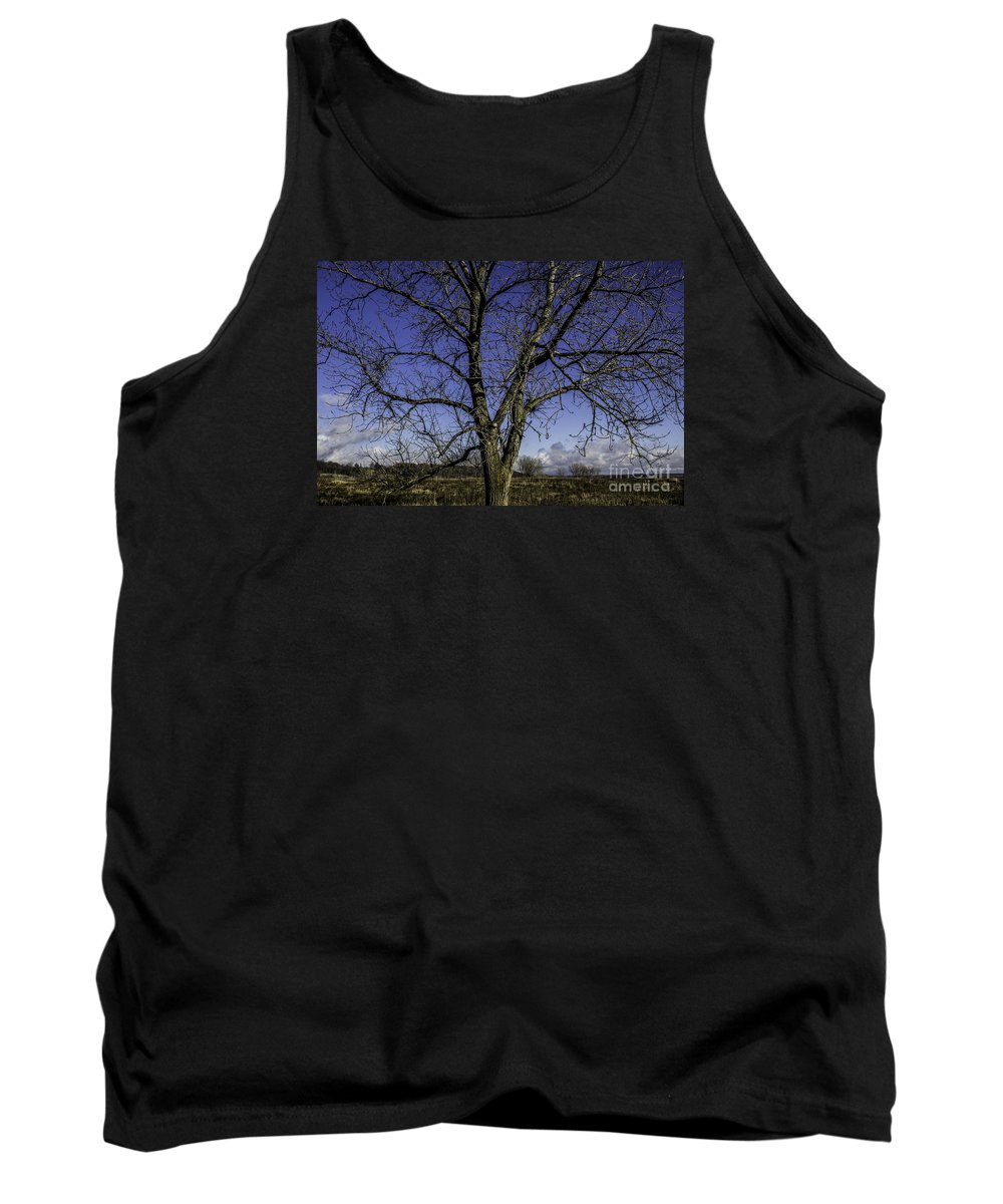 Blue Tank Top featuring the photograph Tree Of Blue by Doug Daniels