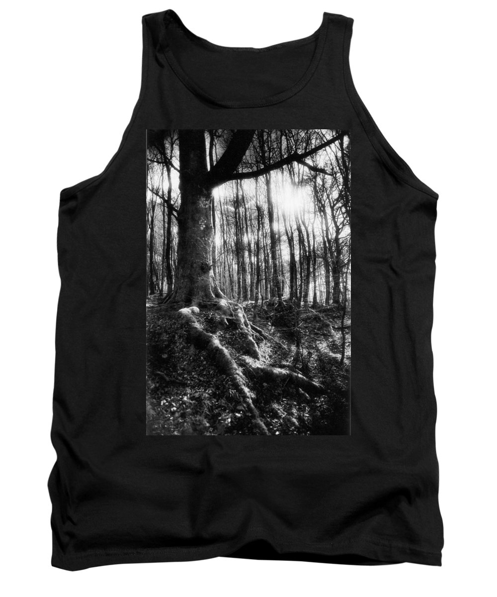 Vale; Legendary; Wood; Woods; Woodland; Landscape; Rural; Countryside; Magical; Mysterious; Fairytale; Bare Trees; Atmospheric; Dramatic; Eerie; Spooky; French; Moonlight; Moonlit Tank Top featuring the photograph Trees At The Entrance To The Valley Of No Return by Simon Marsden