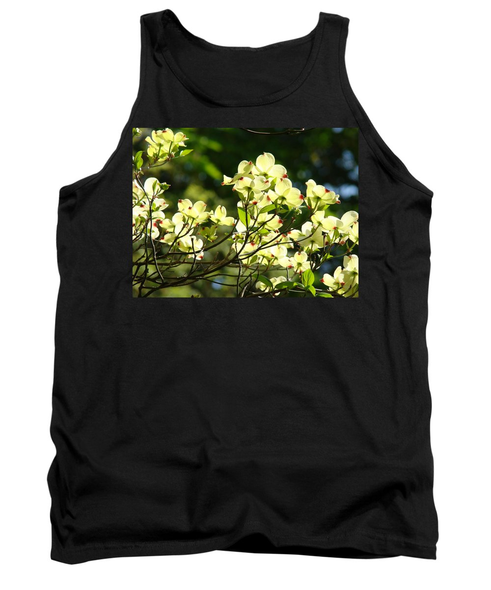 Dogwood Tank Top featuring the photograph Trees Landscape Art Sunlit White Dogwood Flowers Baslee Troutman by Baslee Troutman