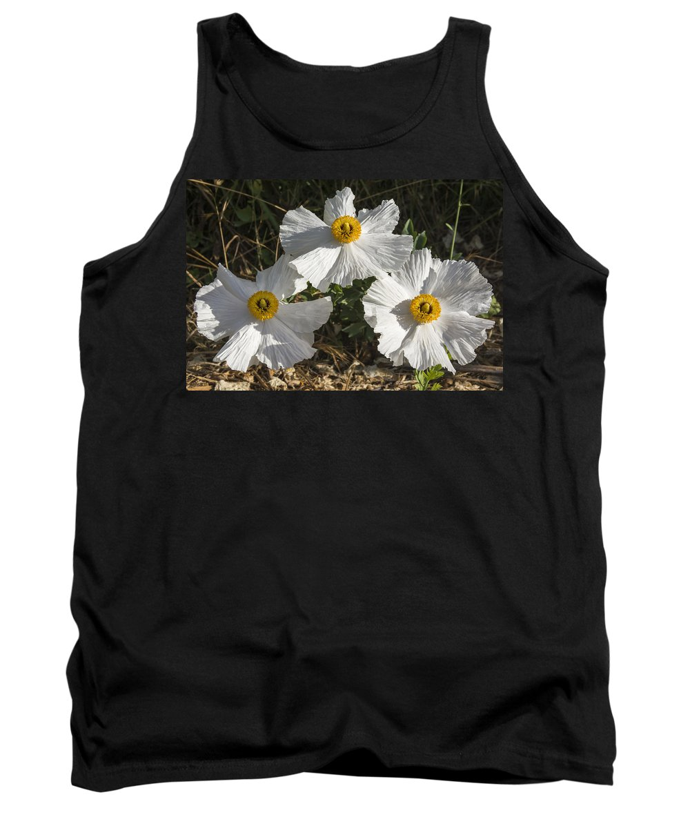 Flower Tank Top featuring the photograph Trio- Matilija Poppy by Bruce Frye
