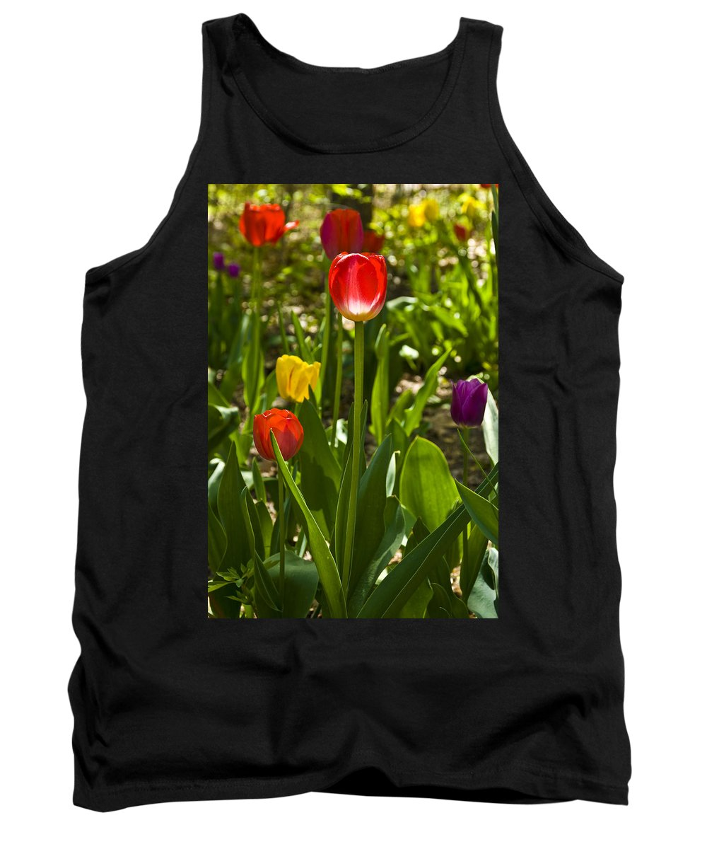 Spring Tank Top featuring the photograph Tulips In The Garden by Anthony Sacco