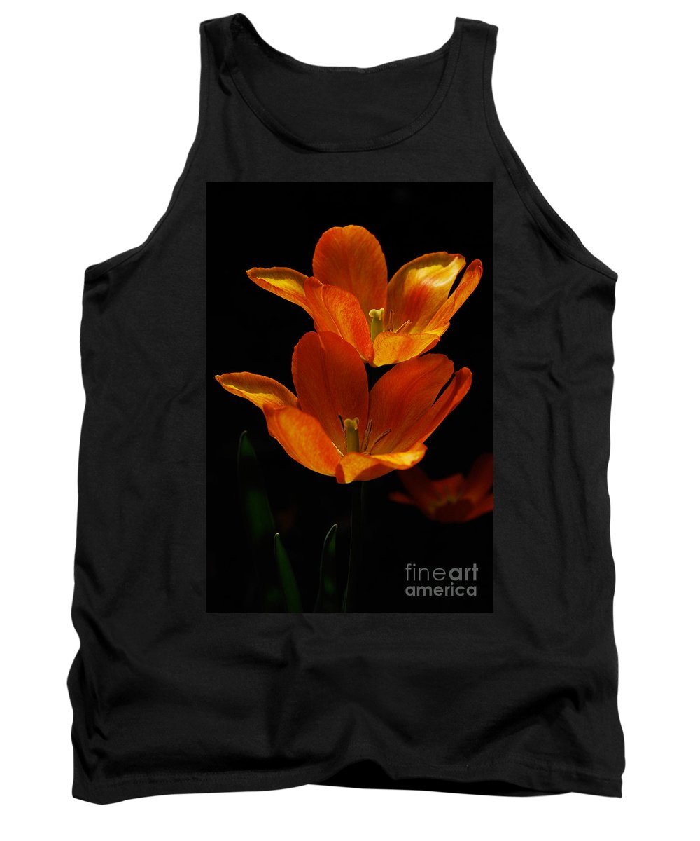 Lois Bryan Tank Top featuring the photograph Twins by Lois Bryan