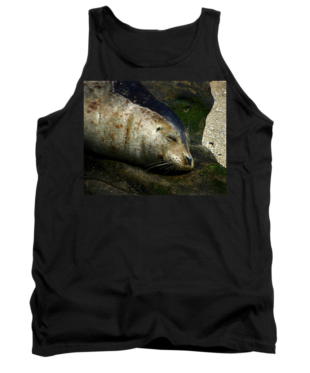 Seal Tank Top featuring the photograph Two Tone Seal by Anthony Jones