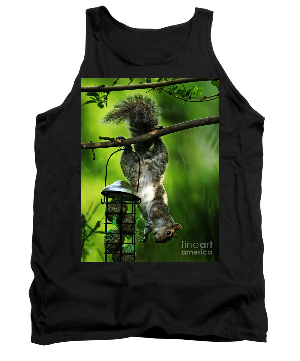 Squirrel Tank Top featuring the photograph Upside Down by Angel Ciesniarska