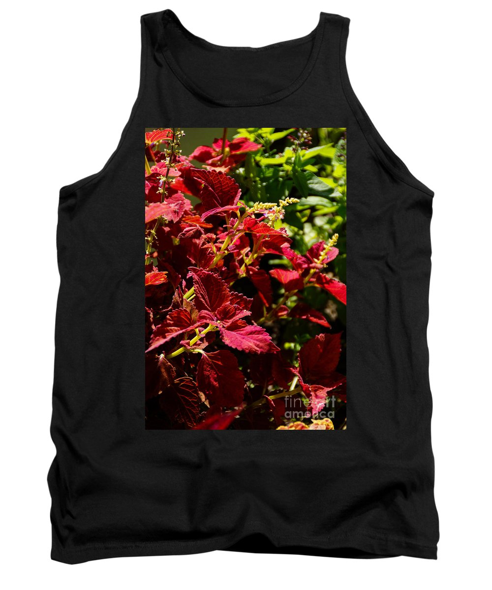 Beautiful Tank Top featuring the photograph Vibrant by Gloria Pasko