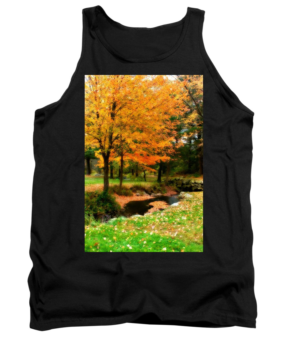 Fall Tank Top featuring the photograph Vibrant October by Renee Hong