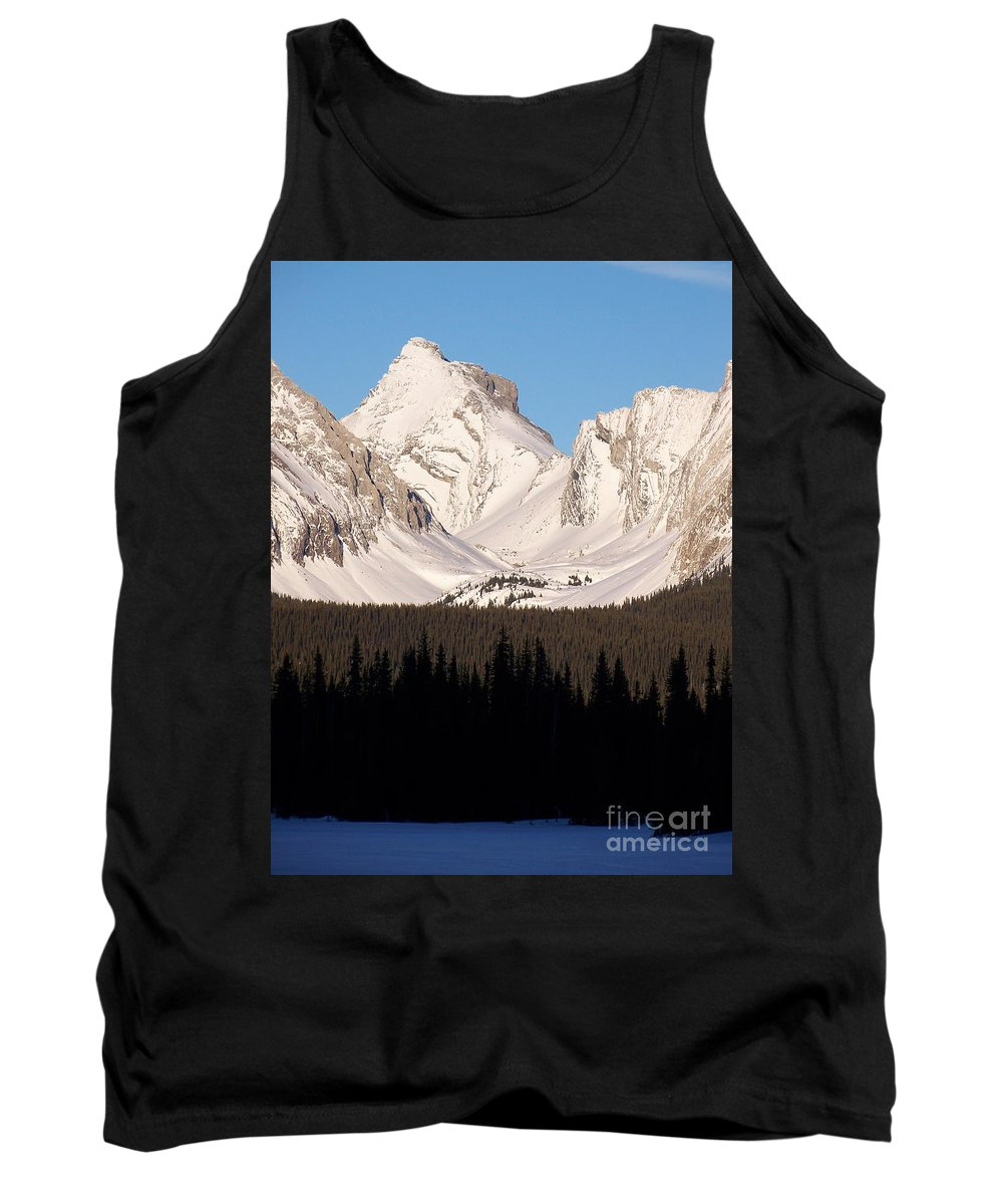 Scenic Tank Top featuring the photograph View From A Frozen Lake by Greg Hammond