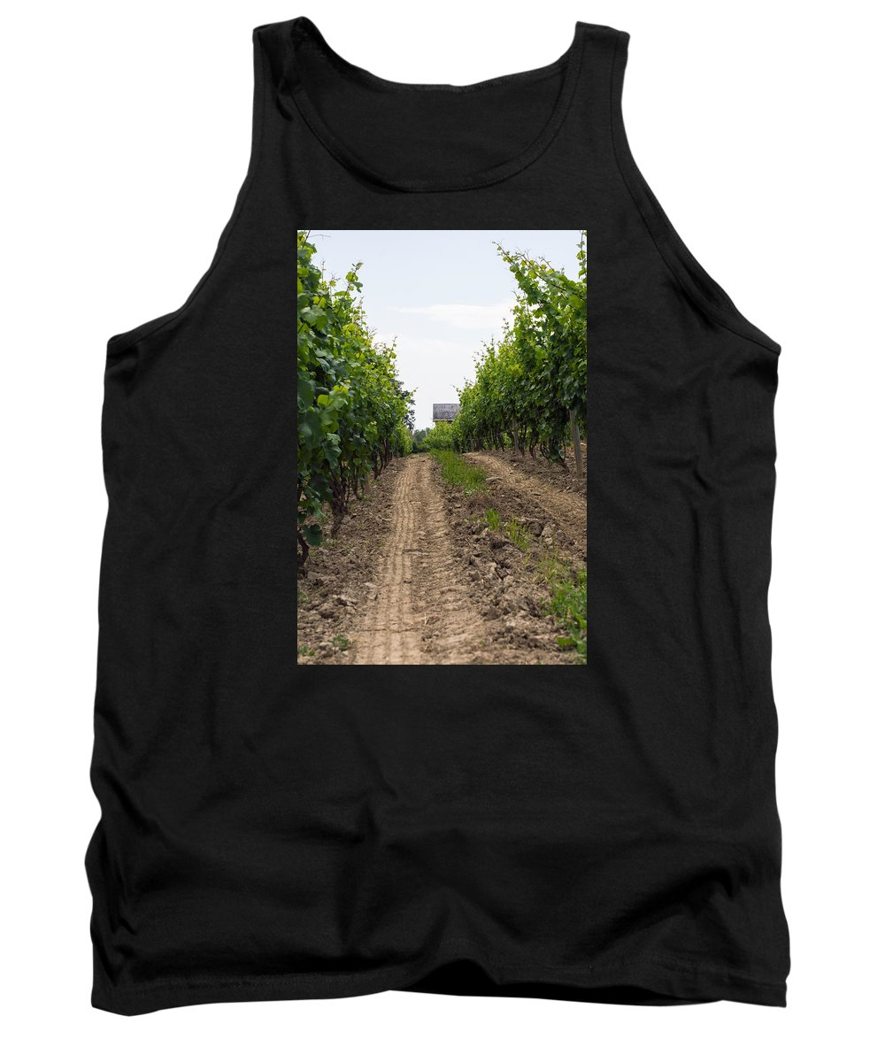 Vineyard Tank Top featuring the photograph Vineyards Of Old Color by Photographic Arts And Design Studio