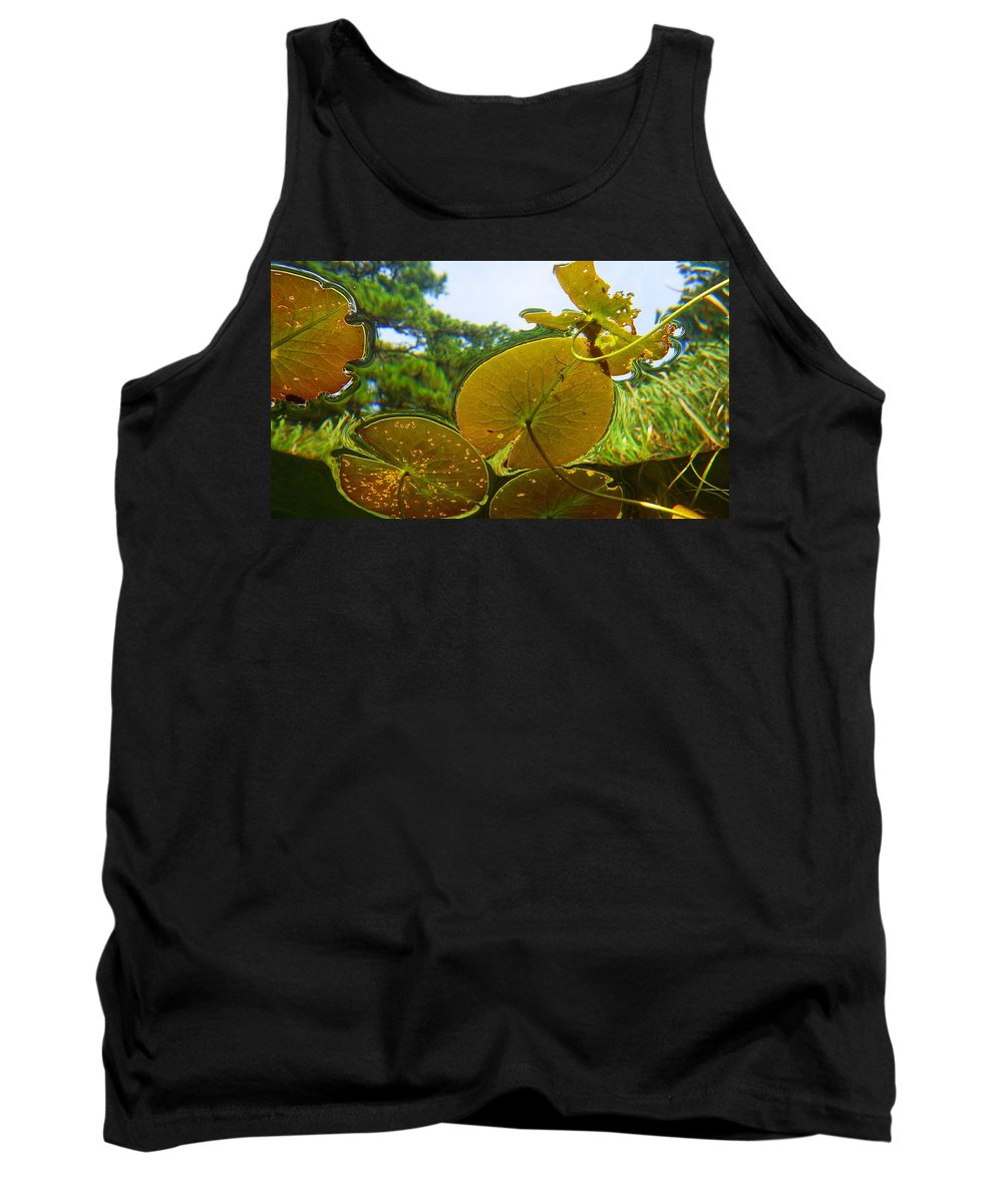 Water Lily Lilies Sky Lake Pine Trees Tank Top featuring the photograph Water Lily Sky by Brian Bastarache