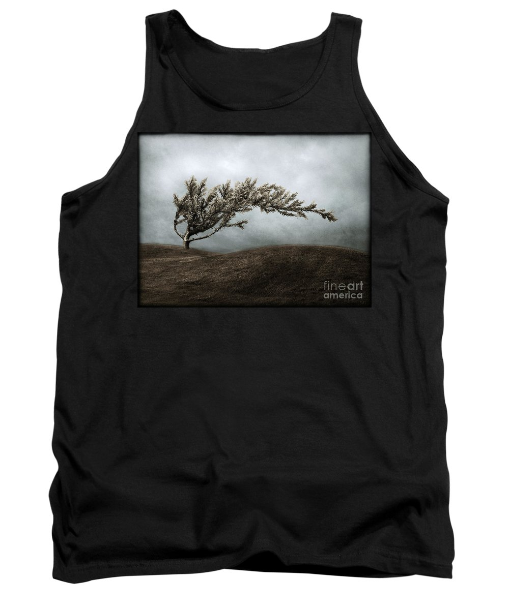 Bend Tank Top featuring the photograph We Break And We Bend And We Turn Ourselves Inside Out by Dana DiPasquale