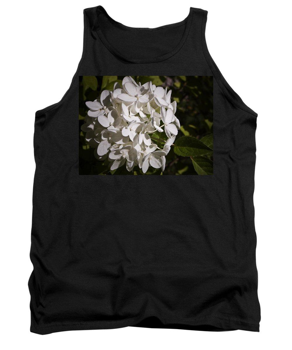 Hydrangea Tank Top featuring the photograph White Hydrangea Bloom by Teresa Mucha