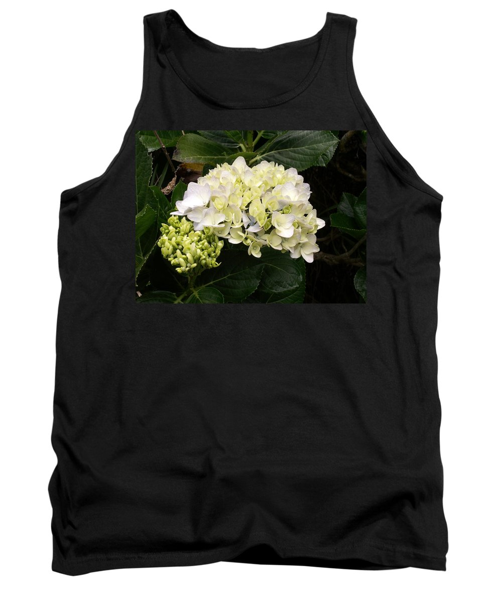 Flower Tank Top featuring the photograph White Hydrangeas by Amy Fose
