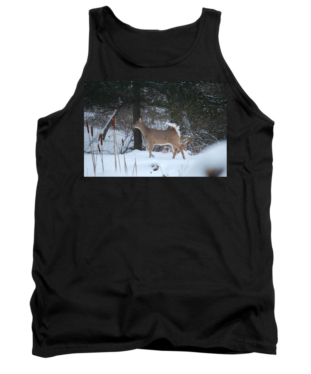 Deer Tank Top featuring the photograph White Tail by Lori Tambakis
